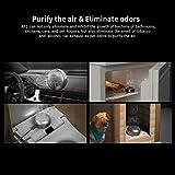 XTAR Mini Ozone Generator Portable Ozone Machine O3 Air Purifier for Car Room Pets Refrigerator Travelling Odors Eliminating