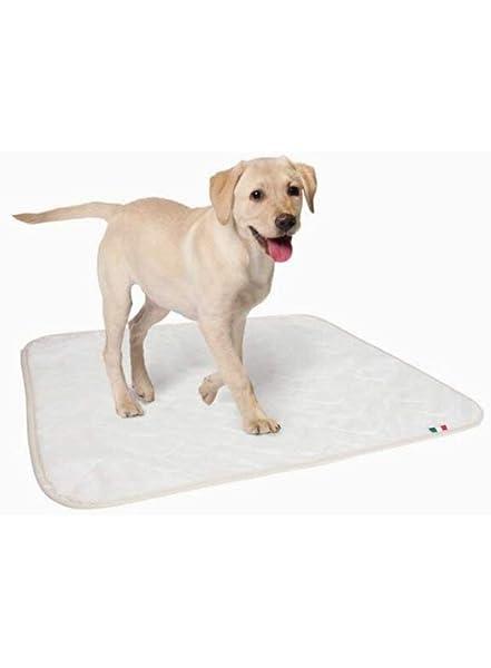 Empapador lavable muy absorbente para perros, medidas 70 x ...
