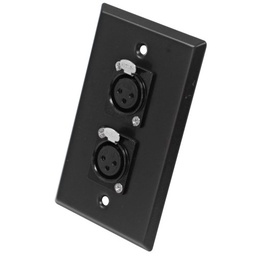 Seismic Audio SA-PLATE3 Black Stainless Steel Wall Plate with Dual XLR Female Connectors (Xlr Female Wall Plate)
