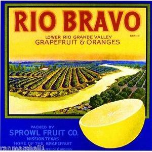 MAGNET Mission Texas Rio Bravo Rio Grande Valley Orange Citrus Crate Magnet Art Print