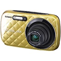 O Casio Exilim EX-N10 Digital Camera Gold EX-N10GD