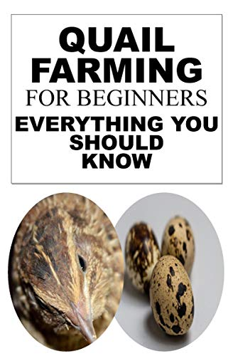 Quail Farming For Beginners: Everything You Should for sale  Delivered anywhere in Canada