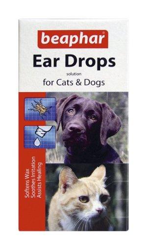 Treat Dog Ear Mites - 7