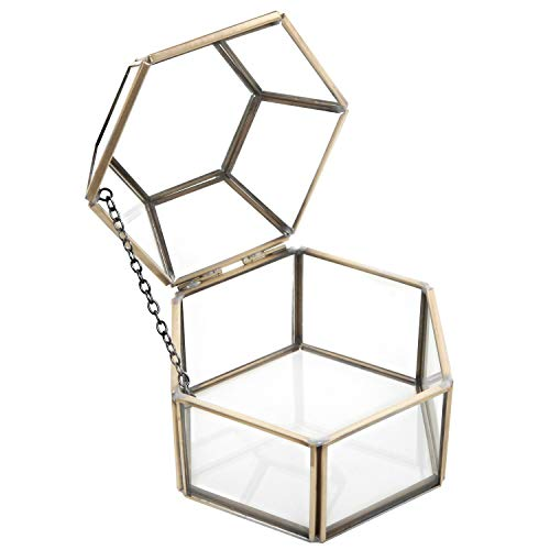 (MyGift Faceted Hexagonal Clear Glass & Brass-Tone Metal Hinged Top Lid Terrarium Box/Tabletop Display)