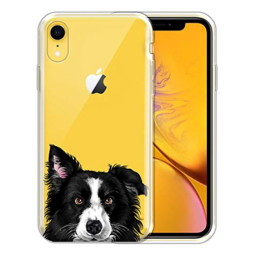 FINCIBO Case Compatible with Apple iPhone XR 6.1 inch, Clear Transparent TPU Silicone Protector Case Cover Soft Gel Skin for iPhone XR - Black and White Border Collie Dog