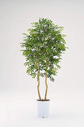 ライオン事務器 品番57779 人工植物 CK-246   B01M1OBN2F