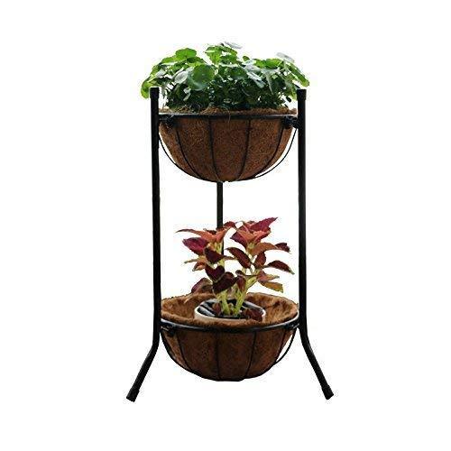AILIWEI Bonsai Frame Plant Espositore Flower Stand per la Decorazione di Interni ed Esterni (colore   Nero)