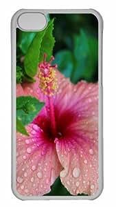 Customized iphone 5C PC Transparent Case - Doorplates On Hibiscus Personalized Cover