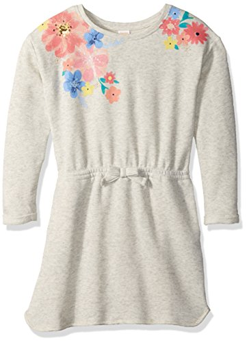 Gymboree Big Girls Short Sleeve French Terry Dress  Multi  5