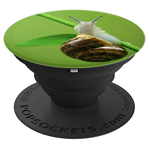 Snail Slimy Green Snails Gastropods Gift - PopSockets Grip and Stand for Phones and Tablets