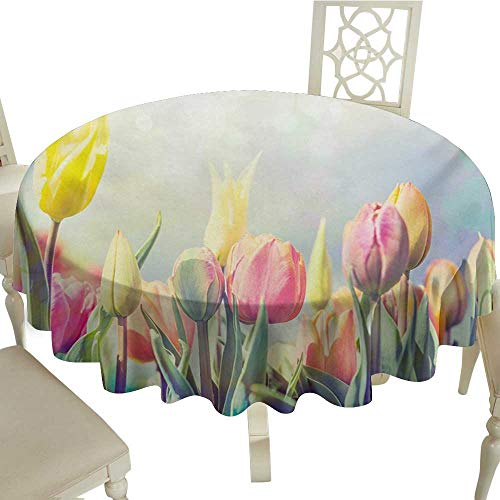 Zodel Stain-Resistant Tablecloth Pastel Tulips Flower Bed in Park Serene Landscape Happiness Fresh Spring Environment Image Easy to Clean D36 Suitable for picnics,queuing,Family