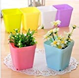 Roto - 10pcs/lot Gardening Mini Plastic Pots Vase with Tray Square Flower Bonsai Planter Nursery Pots
