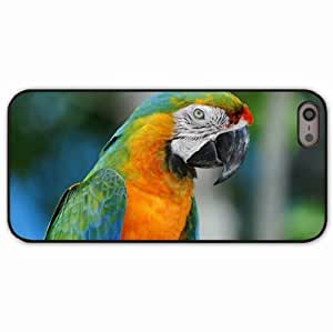 iPhone 5 5S Black Hardshell Case parrot colorful beak Desin Images Protector Back Cover