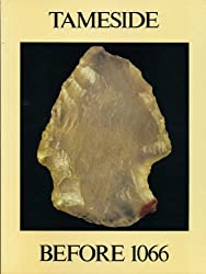 Tameside Before 1066 (History & Archaeology of Tameside)
