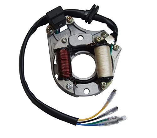 shamofeng 2 Coil Stator Ignition Magneto Plate for 49cc 50cc 70cc 90cc 110cc 125cc Chinese ATV Quad Go Cart Dirt Bike Taotao Sunl JCL