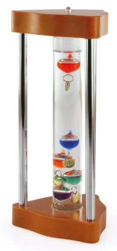 Global Village Galileo Thermometer - Petite Framed 7.5