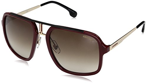 Gold Rojo Sonnenbrille Brwn Sf Red 1004 S Carrera pZXTqx