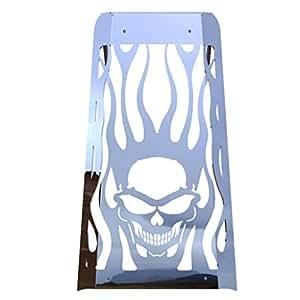 skull flame polished stainless radiator cover. Black Bedroom Furniture Sets. Home Design Ideas