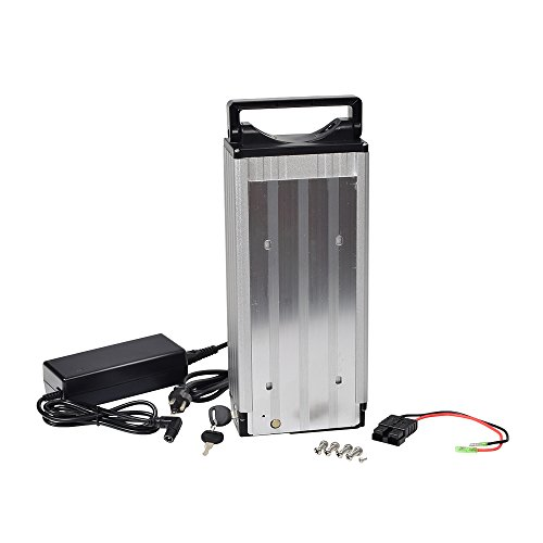 Monster Motion Lithium-ion Electric Bike Battery Pack & Charger (24 Volt)