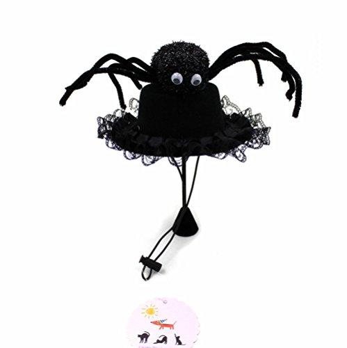 Big W Costumes Australia (Cool Black Big Spider Top Hat Pet Hat Costume Cat Little Dog Puppy Hat Novelty Party Dress Up w/ Adjustable String (Medium))