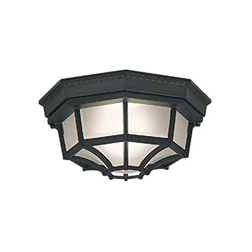 Black Builder Cast (Designers Fountain 2067-BK Builder Cast Aluminum Family 1-Light Exterior Flush Mount, Black Finish with Frosted Glass)