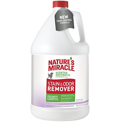 (Nature's Miracle P-96970 Dog Stain and Odor Remover, Lavender)