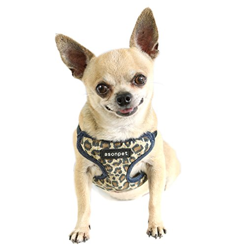 NACOCO Comfortable Soft Cat Dog Puppy T-strap, Leopard Print Cat Dog Harness,mesh Inner (S)