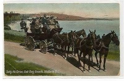tally-ho-drive-oak-bay-beach-postcard-posted-1908-19349