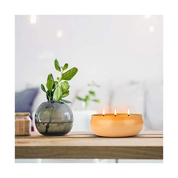 41GR2KZMJGL Aku Tonpa Citronella-Kerzen für den Innen- und Außenbereich, 382 g, 3 Dochte, Sojawachs, tragbare Reisedose, Geschenk…
