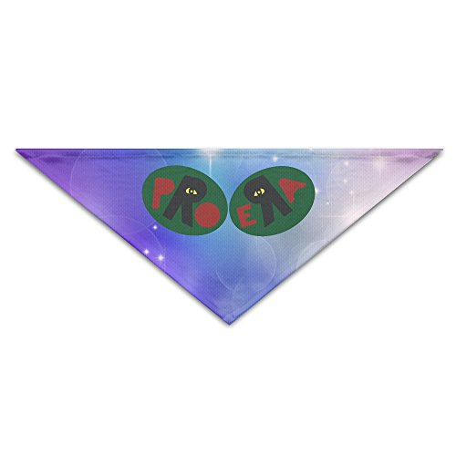 Pet Bandanas   Personalized Capital Steez Pro Era Pet Bandana Scarf   Triangle Scarf Collar Neckerchief For Dog Cat
