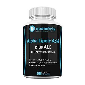 Gut Health Shop 41GR5GEN6GL._SS300_ Alpha Lipoic Acid Plus Acetyl L-Carnitine Antioxidant Supplement ALA ALC for Healthy Brain Function & Muscle Strength…