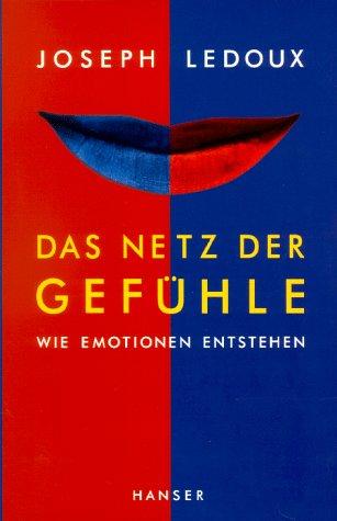 Das Netz der Gefühle: Wie Emotionen entstehen
