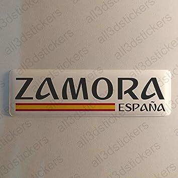 Pegatina Zamora España Resina, Pegatina Relieve 3D Bandera Zamora España 120x30mm Adhesivo Vinilo: Amazon.es: Coche y moto