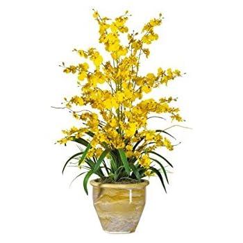 Amazon nearly natural 1070 yl triple dancing lady silk flower nearly natural 1070 yl triple dancing lady silk flower arrangement yellow mightylinksfo