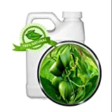 Sacha Inchi Oil - Virgin - 32 oz - Super Moisturizer, Anti-wrinkle, Omega 3, Omega 6, Omega 9, antioxidant