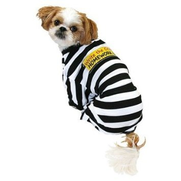Pet Pajamas - Prisoner - Write the Crime! (x-large) by TARGET (Prisoner Costume Target)