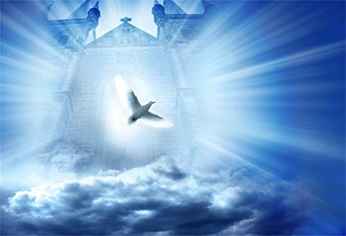 - Laeacco 10x8ft Holy Spirit Dove Light Rays from The Gate of Heaven Backdrop Vinyl Sea of Clouds Paradise Pentecost Background Church Bible School Event Activities Wallpaper Jesus Christian Belief
