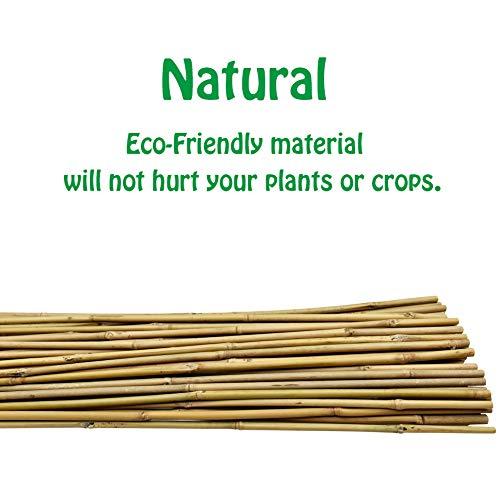 Mininfa 4 Feet Natural U-Hoops Bamboo, Garden Trellis, Bamboo Trellis U-Shape for Plant Support - 3 Pack