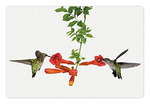 Hummingbirds Pet Mats for Food and Water by Ambesonne, Two Hummingbirds Sipping Nectar from a Trumpet Vine Blossoms Summertime, Rectangle Non-Slip Rubber Mat for Dogs and Cats, Red Black (Sipping Nectar)