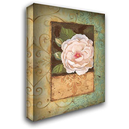 Antique Rose II 20x24 Gallery Wrapped Stretched Canvas Art by Jeffrey, Jillian (Jillian Jeffrey Antique)