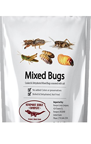 Edible Insects Can of Mixed Edible Bugs. Grasshoppers, Crickets, Silk Worms and Sago Worms