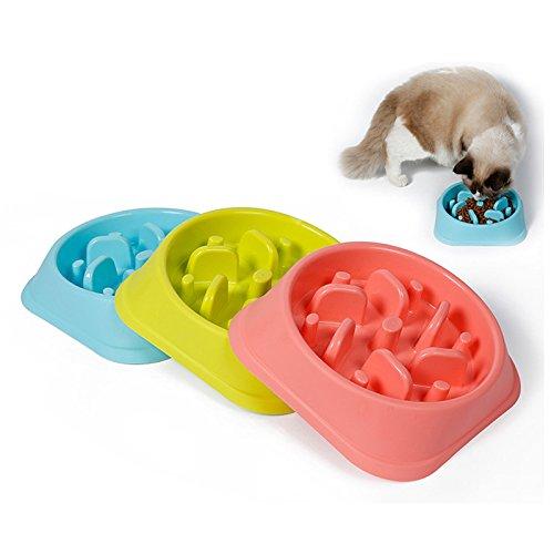 Duckart Plastic Pet Slow Feeder Anti Choke Dog Bowl Puppy Cat Slow Down Eatting Feeder Healthy Diet Dish Jungle Design