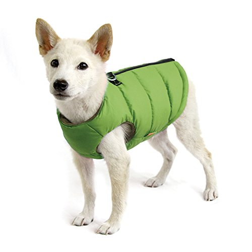 Gooby Padded Cold Weather Vest for Small Dogs with Safe Fur Guard Zipper Closure, Solid Green, (Gooby Dog Clothes)