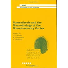 Somesthesis and the Neurobiology of the Somatosensory Cortex