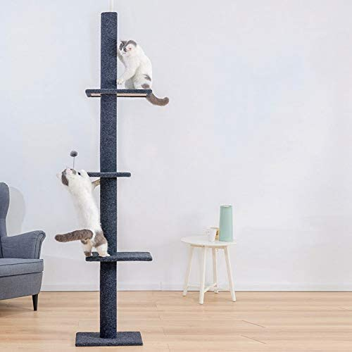YEEXCD Gato Torre del árbol del Gato Rascador Rascador Suelo hasta el Techo Cubierto Liso Suave Felpa Gato Centro de Actividades para Jugar a Relajarse y Dormir: Amazon.es: Hogar