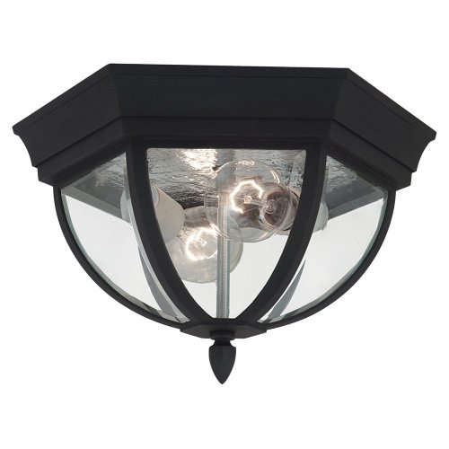 Sea Gull Lighting 78136-12 Wynfield Two-Light Outdoor Ceiling Flush Mount Hanging Modern Light Fixture, Black Finish