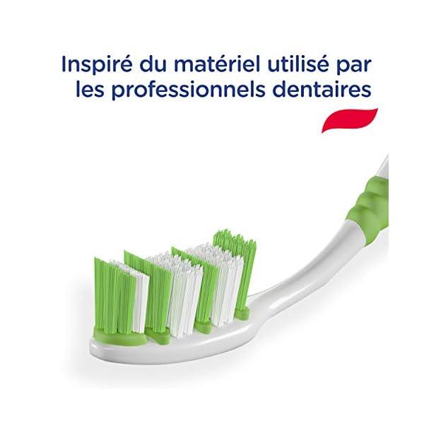 Signal Brosse à Dents Manuelle Expert Confort, Souple (Lot de 12 Brosse à Dents)