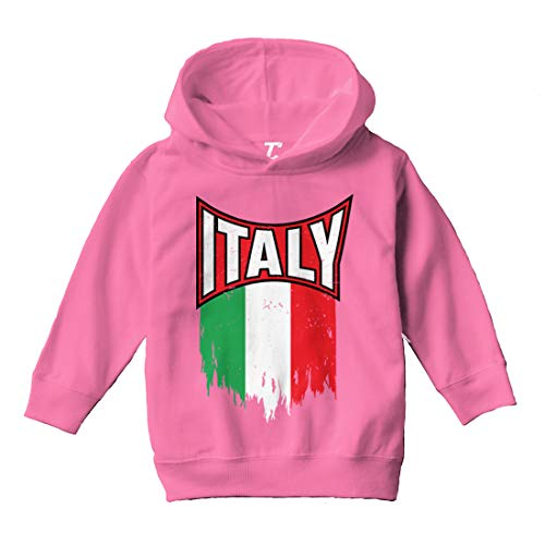 Tcombo Italy Torn Flag - Italian Strong Pride Toddler/Youth Fleece Hoodie (Pink, Small (Youth))