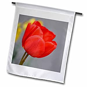 Patricia Sanders Flowers - Pretty Red Tulip- Flowers- Floral Photography - 18 x 27 inch Garden Flag (fl_48598_2)