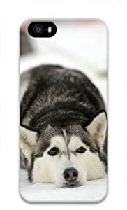 Huskie Lie on the Snow for Iphone 5 5s 3D Case